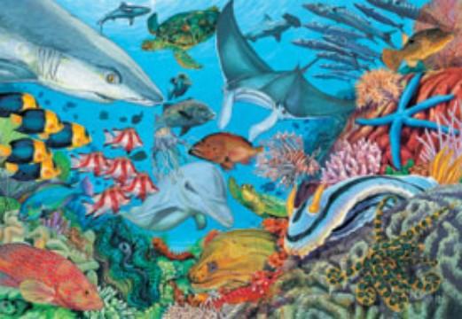 Underwater Fish... Underwater Fish Scene